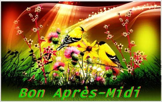 bonjour bonsoir du mois d'avril Juste-bon-midi-oiseaux-img